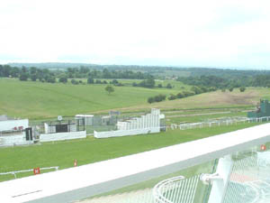 View of Epsom Downs from the room used for the AGM